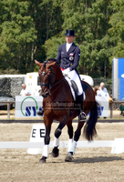 Dressage 19 by JullelinPhotography