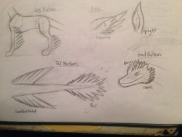 Mythical dogs type: Feathered (1 of 2) by Dinoboy134