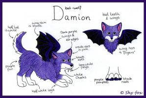 Damion ref sheet by shy-fox