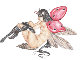 the LadyBug Fairy by caterpillar96