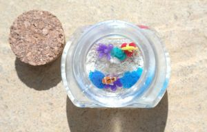 Coral Reef in a Bottle. by oceansinminiature