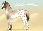 Akhal-Wari Import 082 by horsy1050
