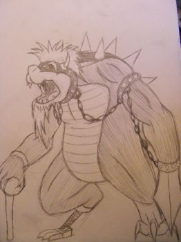 Mr. B. father of bowser by The-Insignia