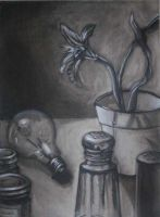 Charcoal Still life by Throughawolfseyes