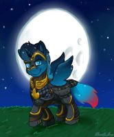 The Warrior of Night (Gift) by MyFantasyZone