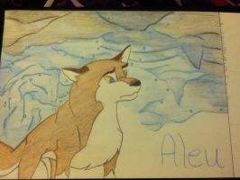 Balto's Daughter Aleu by DjMouse18