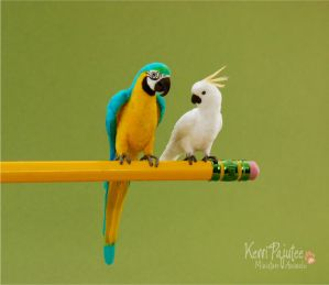Miniature Parrot sculpts by Pajutee