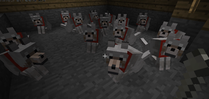 My Wolves in Minecraft by Super-Chey