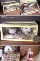 Miniature: 'Hamster house' by fiat500S