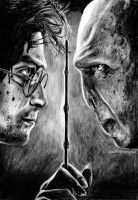 Harry Vs Voldemort by ScenicSarah