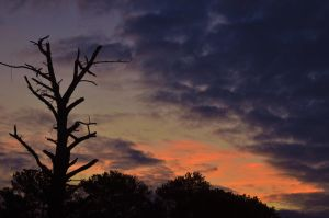 Morning sky 2 1-27-13 by Tailgun2009