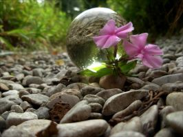crystal ball on the path by April-Mo