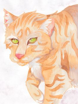 Chubby Gingers Are Cute - Pet Portrait by Nendakitty