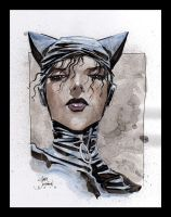 Catwoman 16 by Gary Shipman by G-Ship