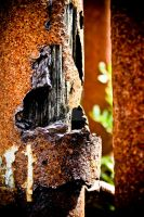 rusty wood by puddingtown