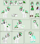 Mint Chip Ultimate Ref Sheet by Lost-Our-Dreams