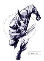 Wolverine by johnnymorbius