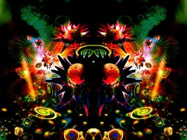 Trippy Flowers by Hydrolyphics