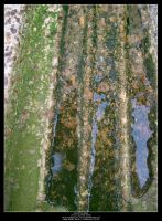 Mossy Gutter Thing by Angelrat-Stock