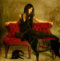 Mistress Noir's Pets by VisualPoetress