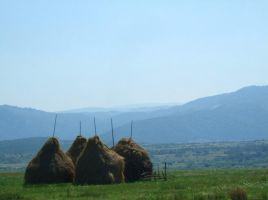 Haystacks by the4ce