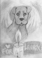 R.I.P. Lennox .:. Fight BSL by TonomuraBix