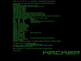 nmap Hacker by berner