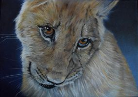 WIP Lion cub by HendrikHermans