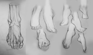 Foot-anatomy practice by TanyaGreece