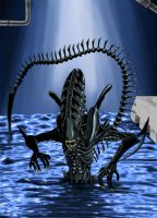 Xenomorph by Genocide-X