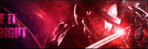 Raiden Banner - PASBR by BloodyViruz
