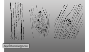 Woodgrain photoshop Shapes by ariimage