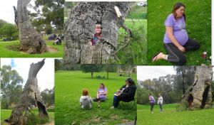 Day At The Park by Kargroth