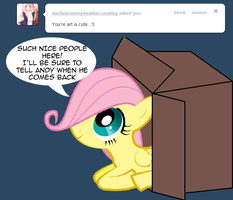 ASK FLUTTERBOX 2 by PhenomenonTucker