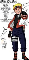 Garou: Full Profile by ode2sokka