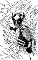 Wolverine - inks by teamzoth