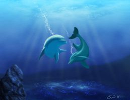 More Dolphins by xTacitusx