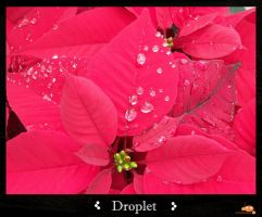 Droplet by ruinlord
