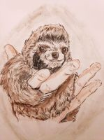 Hand Sloth by CpointSpoint