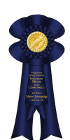 FSS Summer Show - A~ Show Jumping 1st Place by 4EverIsntLongEnough
