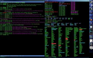 Slackware Linux Screencap 2 by razgriz12991