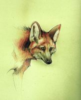 Maned Wolf by Loputyn