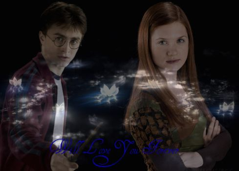 Harry and Ginny by Chicawolf12