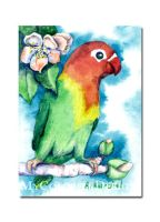 ACEO - Lovebird by Dusty-Feather