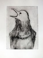 Drypoint- raven woman by Ichuuu
