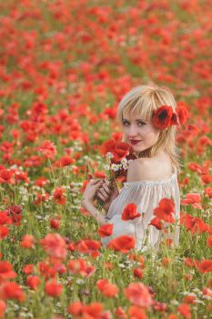 Poppy field by Solceress
