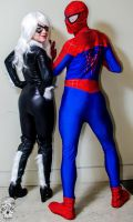 Black Cat or Spidey, who will you choose? by MrFancypants55