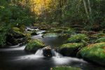 Heart of the Smokies by ChadRouthier