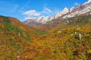 Autumn in Paklenica by ivancoric