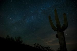 Saguaro Starlight by jamezevanz